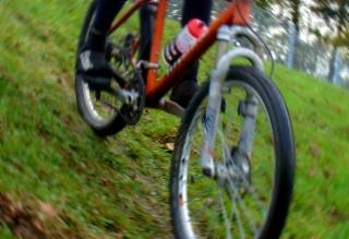 Mountainbike auf einer Wiese
