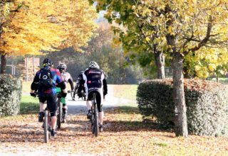 Mountainbikedahren am Flowtrail Bad Endbach